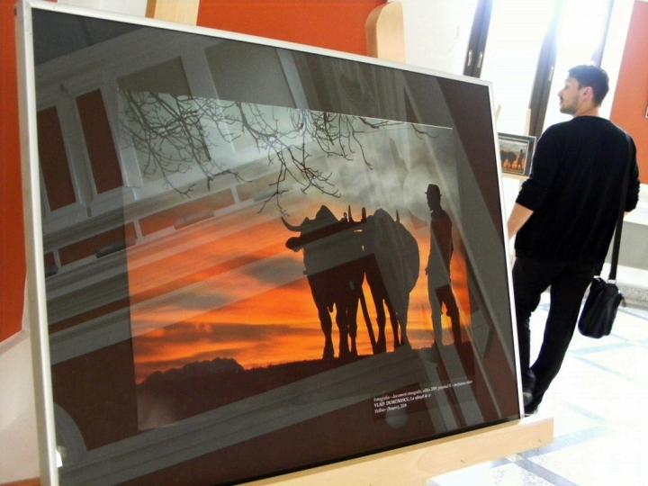 Expozitie arta populara 090